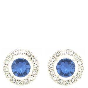 Monet Silver Tone & Blue Crystal Earrings | 336